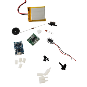 PinkyPi – DIY Electronics Kit